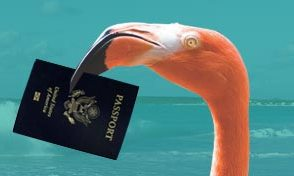 flamingo_passport